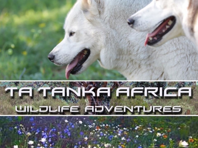 Ta Tanka Africa Photo adventures
